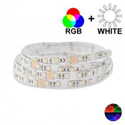 Ruban LED 19,2 Watts/m - RGBW MonoLED - Rouleau 5 mètres 24V